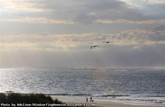 arjen de vries's photo of Renesse