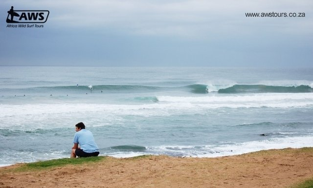Africa Wild Surf Tours's photo of Durban