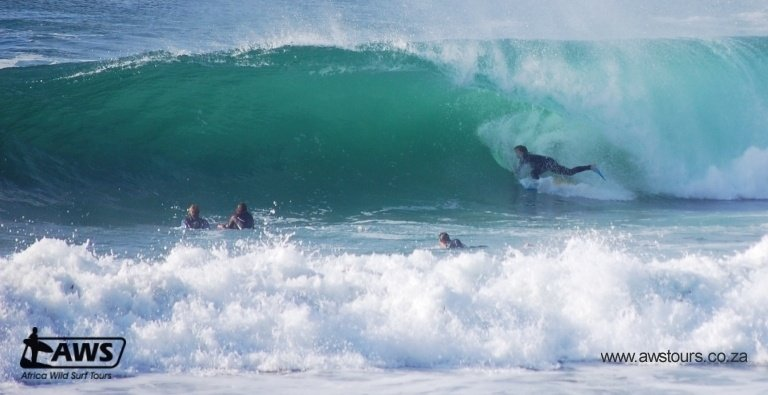 Africa Wild Surf Tours's photo of Cape Town