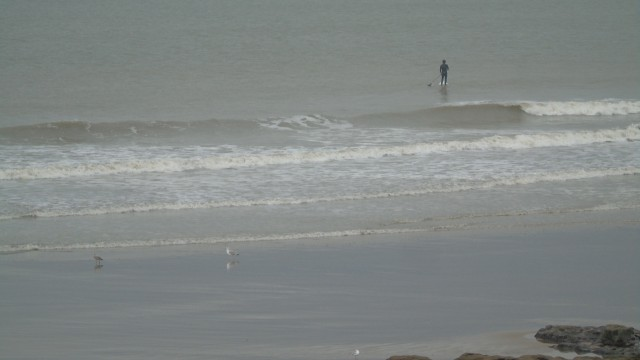 Porthcawl - Rest Bay Informe de Surf